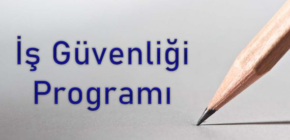 ibys programı